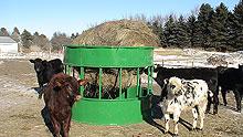 suspended hay feeder