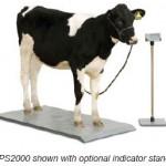 4-H Multipurpose Livestock Scale System