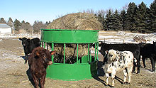 A green hay feeder with a hay bale suspended in it.