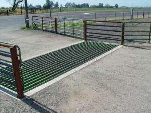cattle guard in roadway