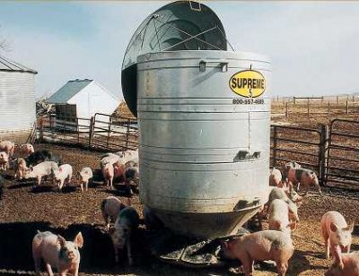 Pig Feeders and Hog Feeders: Create an