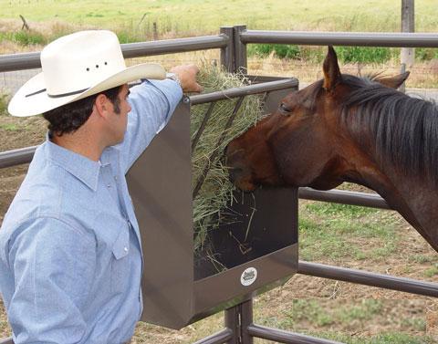horse paddock hay feeder