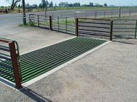cattle guard installed in a roadway with wings