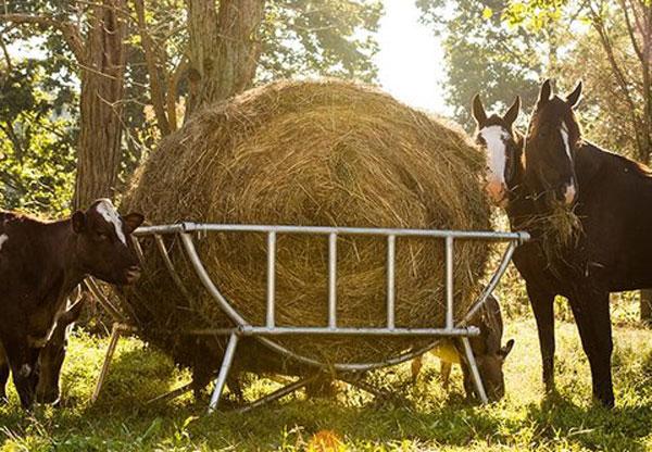 horse hay feeder