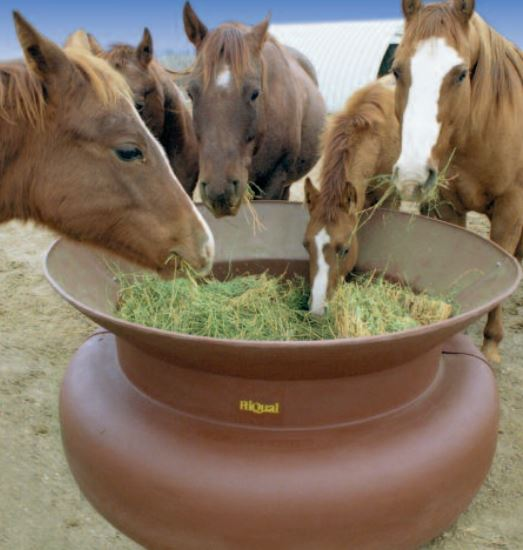 ground horse hay feeder