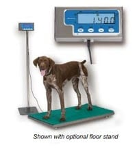 dog standing on an animal scale platform