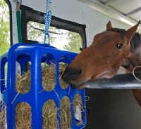 portable stall feeder for horses